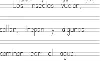 Letras de imprenta